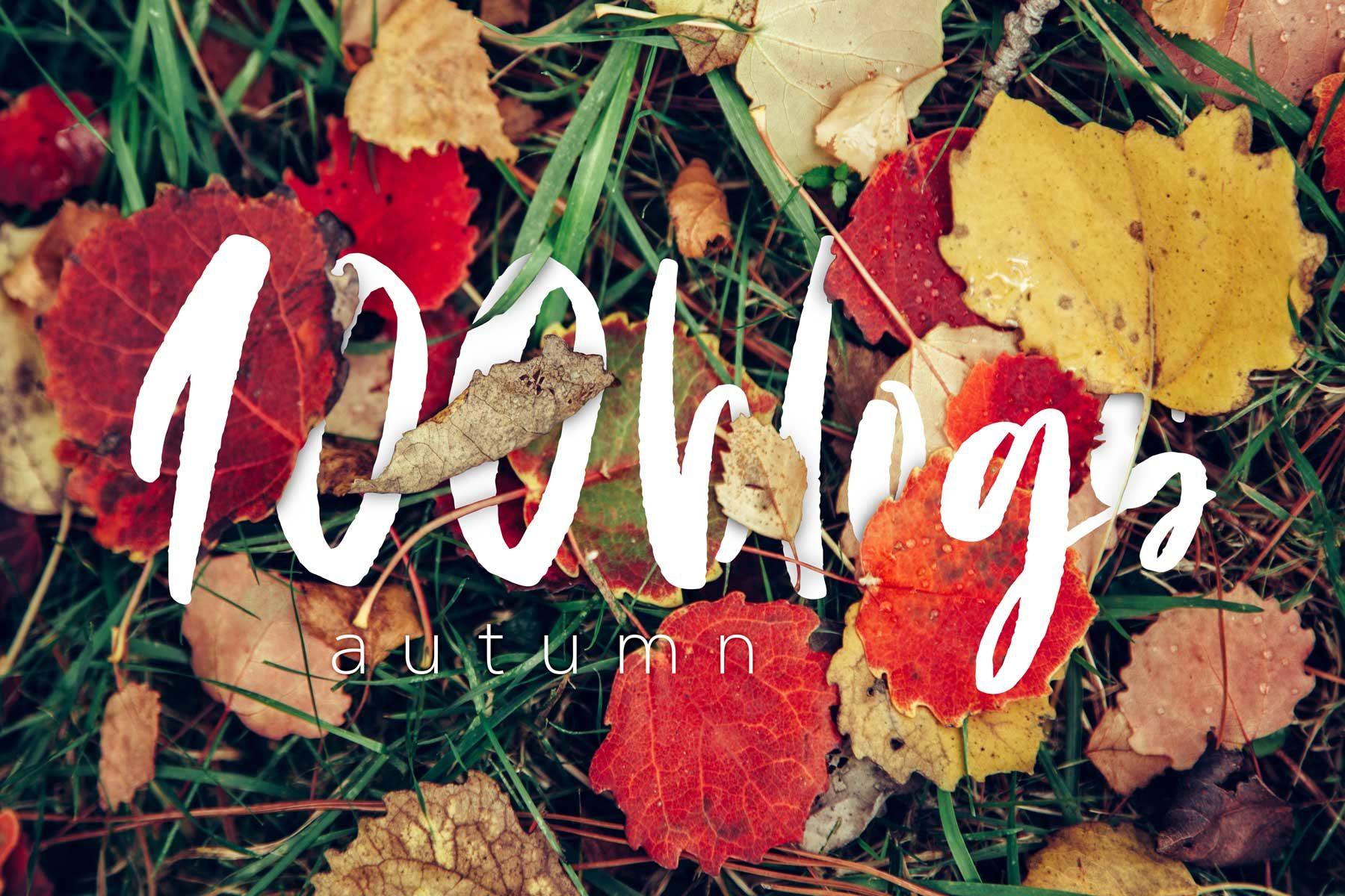 100blogs autumn